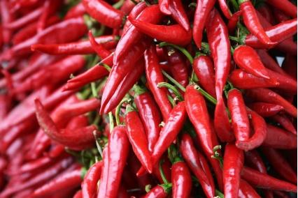 英国厨师培育出世界最辣辣椒 1颗能致命